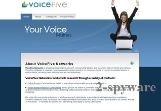 VoiceFive Survey pop-ups snapshot