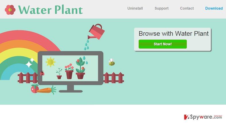 Water Plant virus