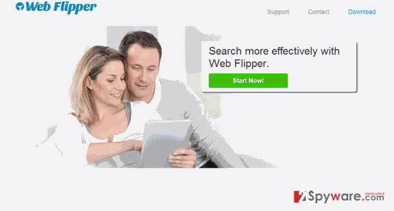Web Flipper ads