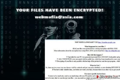 The example of Webmafia@asia.com