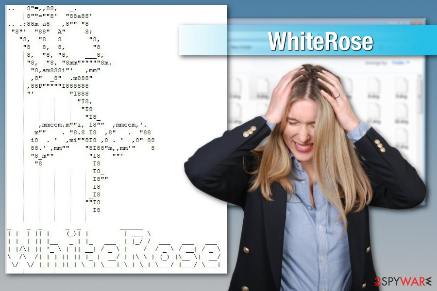 WhiteRose ransomware attack