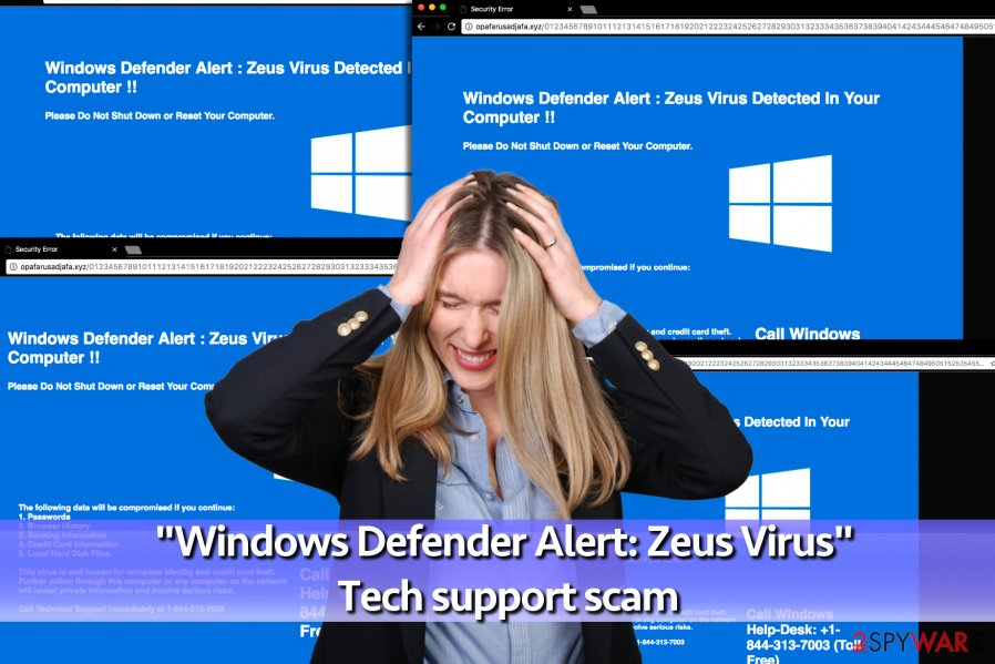 """Windows Defender Alert: Zeus Virus"" Tech support scam virus"