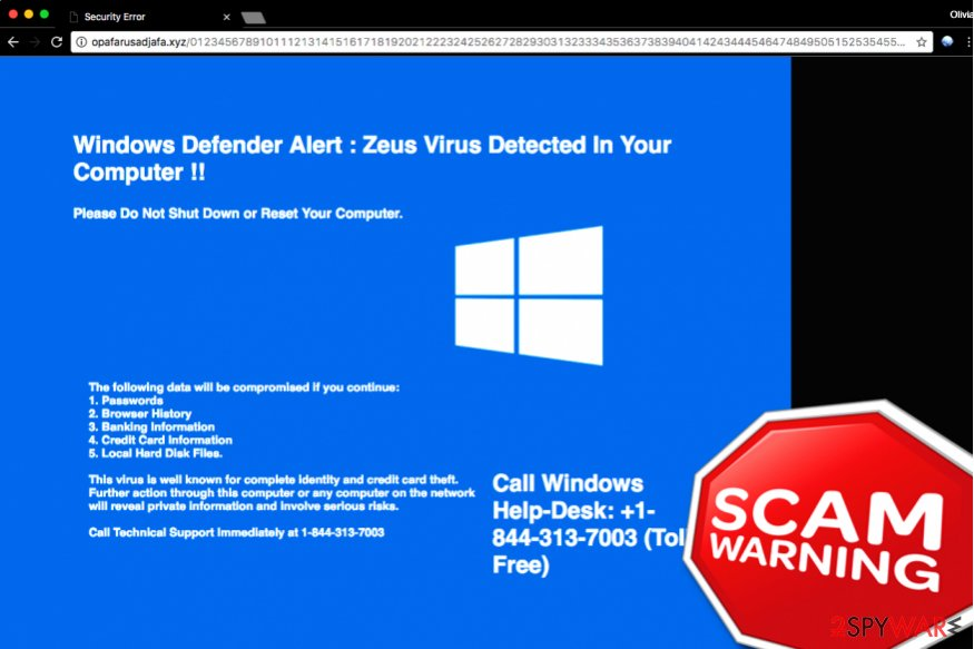 """Windows Defender Alert: Zeus Virus"" Tech support scam"