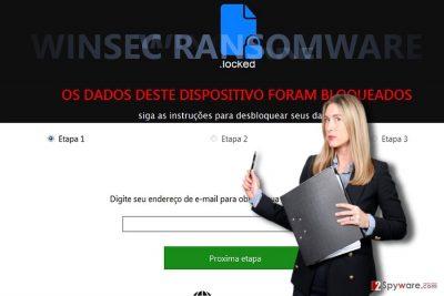 The image illustrating WinSec virus