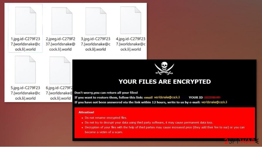 World file virus