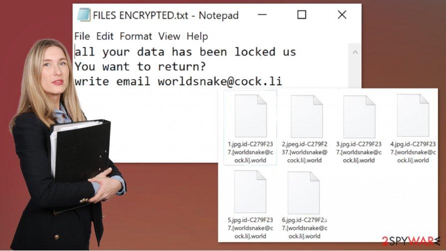 World ransomware virus