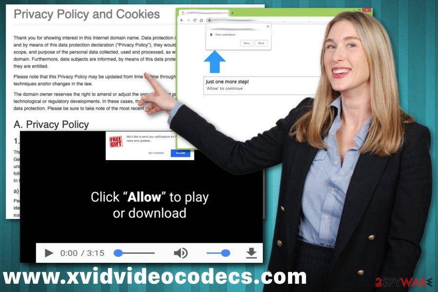www.xvidvideocodecs.com