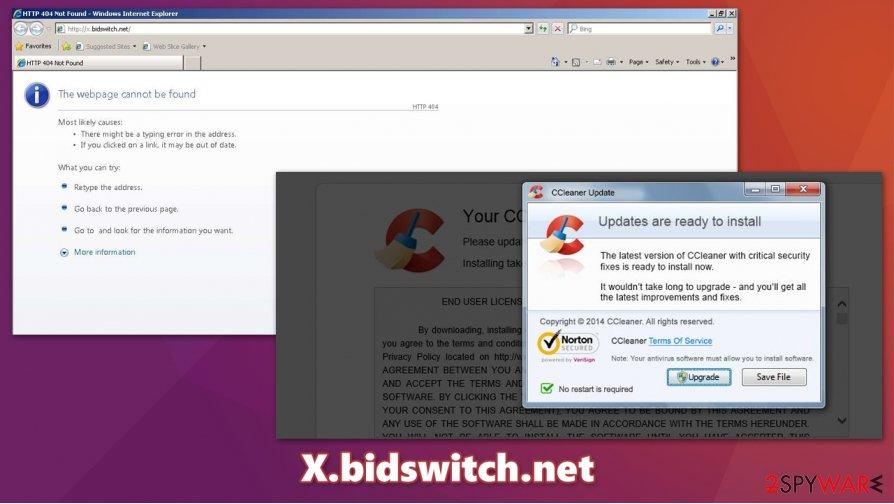 X.bidswitch.net redirect