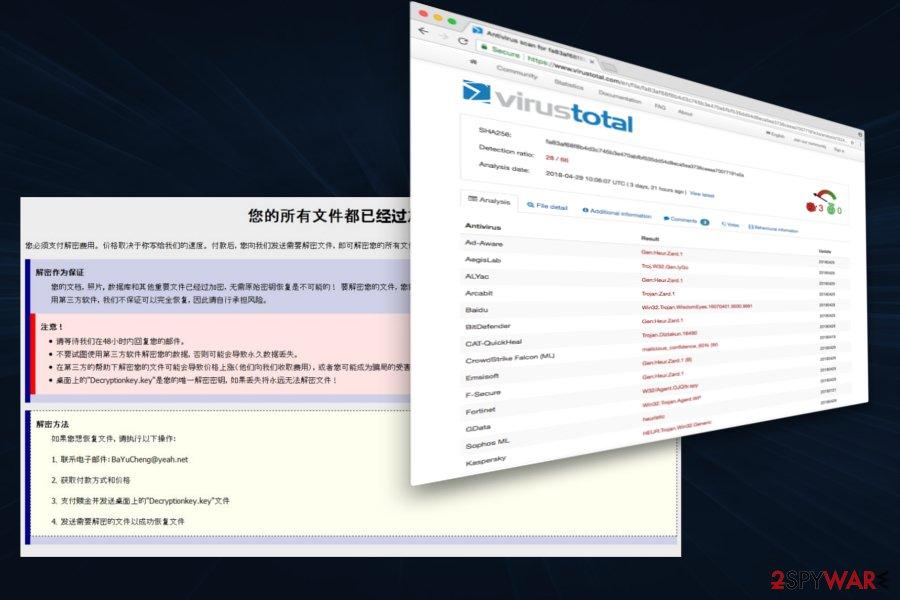XiaoBa virus
