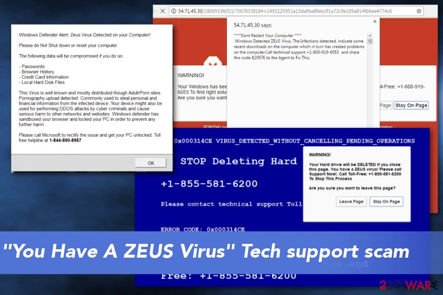 """You Have A ZEUS"" scam virus"