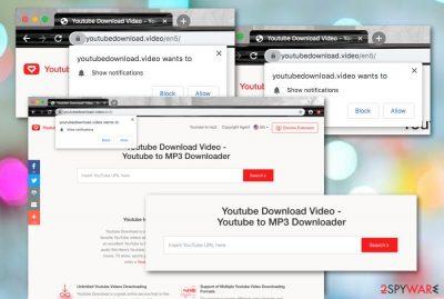 Youtubedownload.video PUP