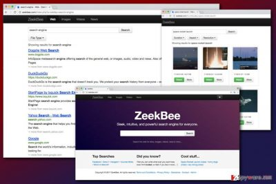 The image of ZeekBee.com virus