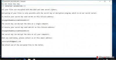 The image revealing ZeroCrypt ransomware