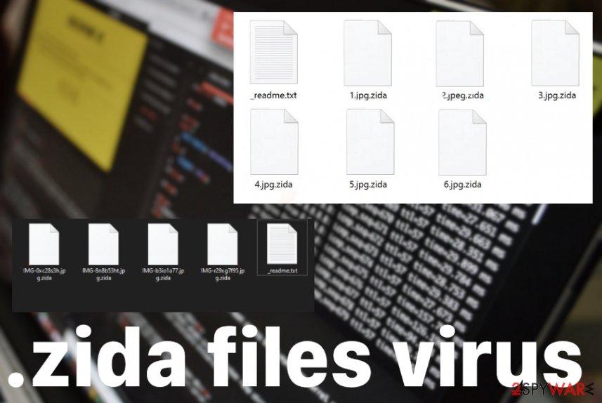 zida files virus