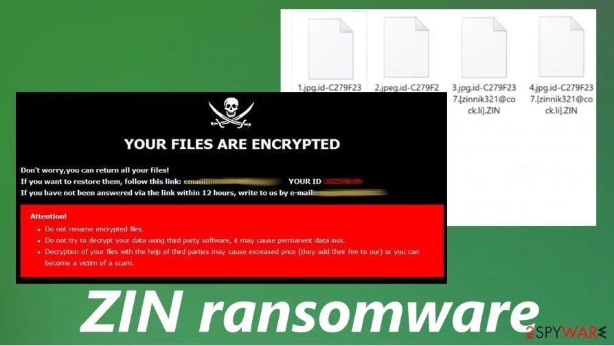 ZIN ransomware