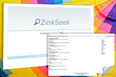 Image of the Zinkseek virus