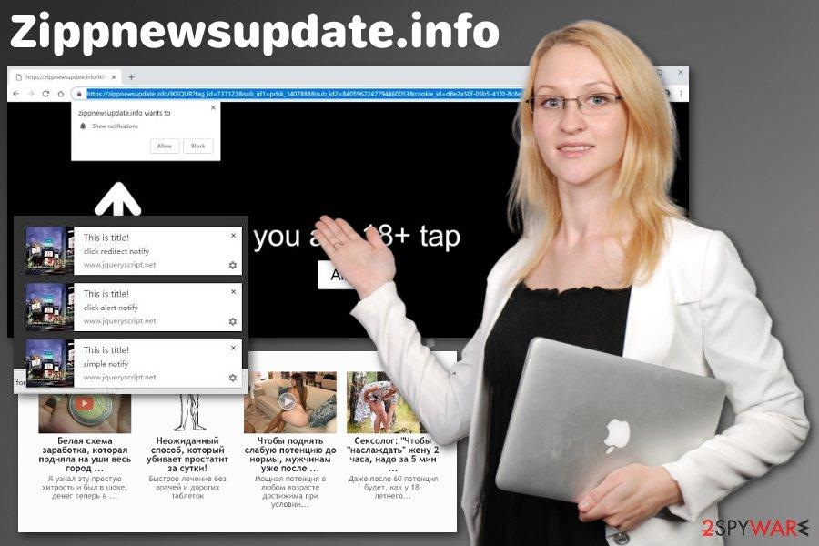 Zippnewsupdate.info