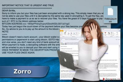 Zorro ransomware virus