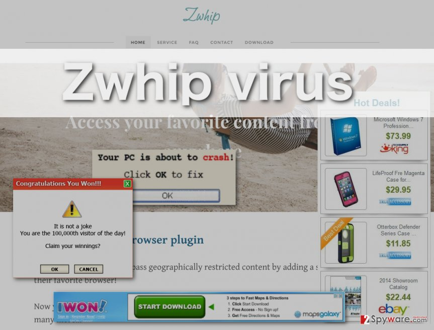 Zwhip virus ads and homepage illustrated
